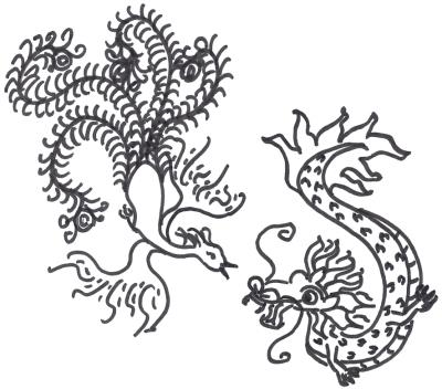 Phoenix and dragon, drawing